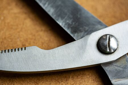 Scissors for cutting fish and meat on the wooden background close up