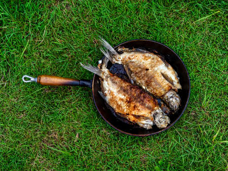 Fresh fried fish bream in pan close up on background of green grass