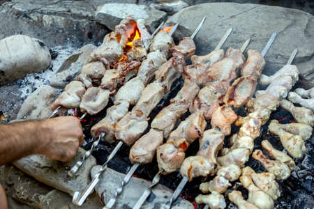 Man's hand twirls barbecue on skewers of chicken legs and pork. Picnic in nature cooking on coals after fire