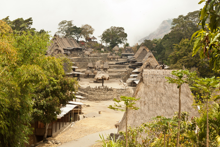shamanic: traditional village Bena village on Flores Island Indonesia Asia