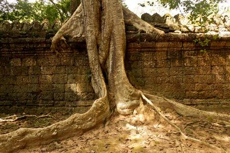 old ruins Angkor Wat Stock Photo