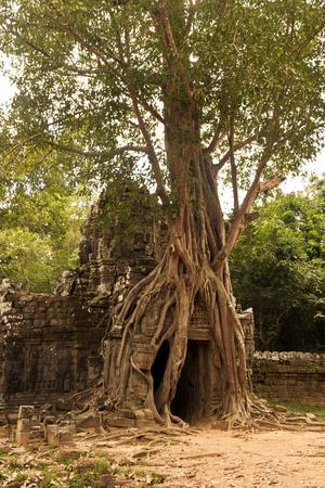 Ta Som temple, Angkor, Cambodia Stock Photo