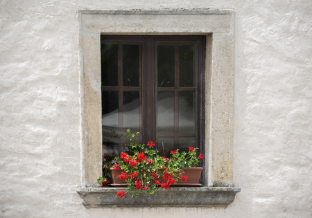 Old window with flower in the summer day 版權商用圖片 - 86432082