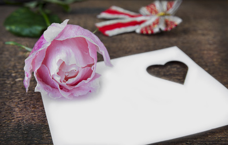Greeting card with pink rose and fill or empty copy space