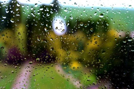 Rain drops on a garden window after the rain Stock Photo