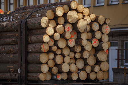 Railway cars loaded timber