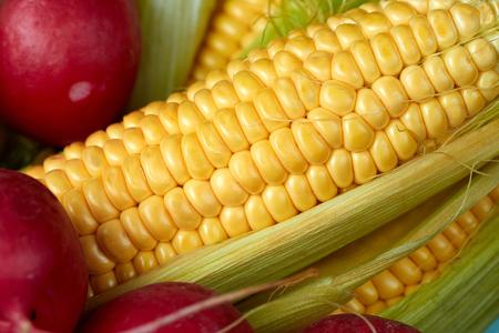 Rábano rojo, maíz amarillo y coliflor. El concepto de verduras frescas y jugosas.