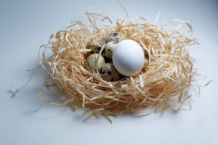 chicken egg and quail eggs in a nest of hay
