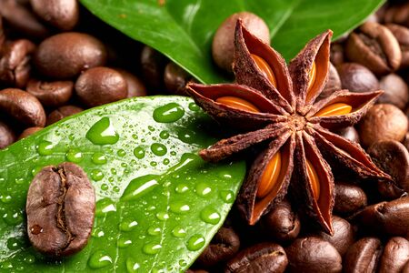 coffee beans with anise and green leaves with dew drops. close up