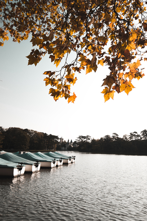 Boat on a Lake in Autumn in Laxenburg Banque d'images