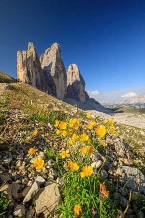 Tre cime di lavaredo - 3 Zinnen in the Dolomites during Summer