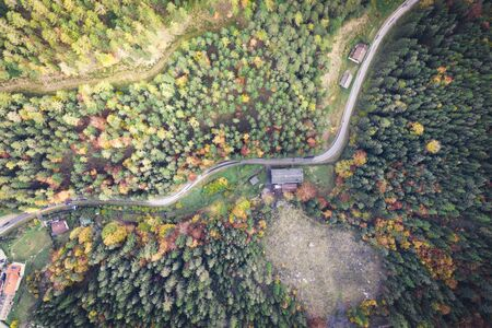 Road in the autumn forest aerial view made with drone Stockfoto
