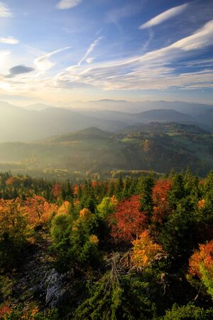 Autumn Forest landscape in the mountains of Austria