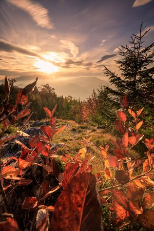 Autumn Sunset landscape in the mountains of Austria - Hohe Wand with colorful Forest