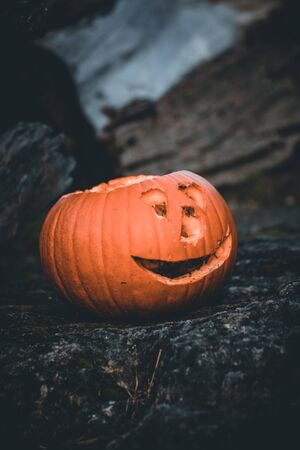 Halloween pumpkin on natural isolated background