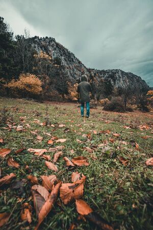 man is standing near a forest in the mountains during autumn in austria
