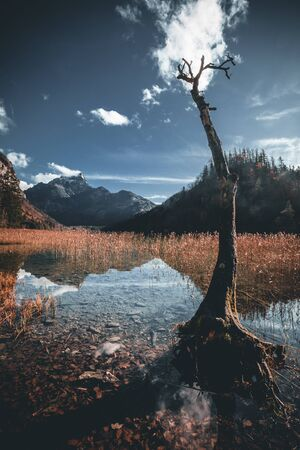 beautiful mountain and lake landscape with reflection during autumn at the leopoldsteiner see in austria Stok Fotoğraf