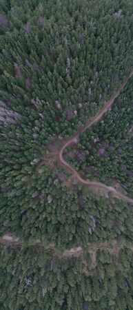 Winding road in the Forest Aerial View in Austria