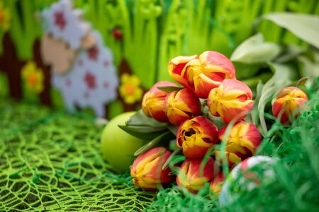 Colorful Easter eggs decorated with flowers in the grass background with space 스톡 콘텐츠