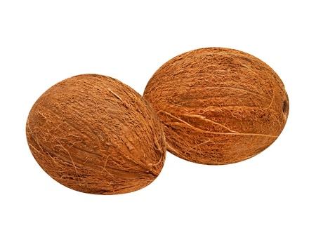 coconut isolated on white background Stock Photo - 9527018