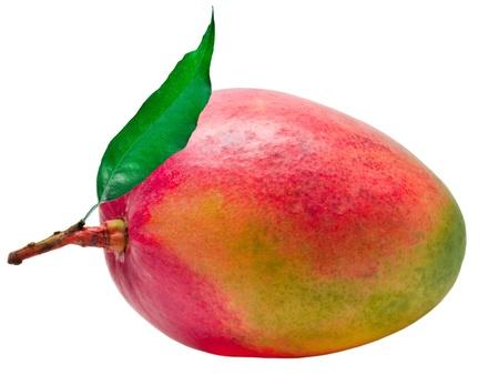Mango isoliert auf weißem Hintergrund Standard-Bild
