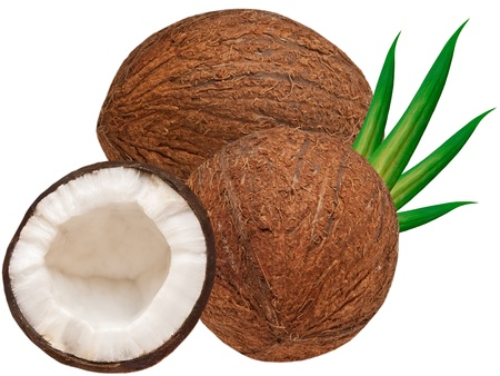 coconut isolated on white background photo
