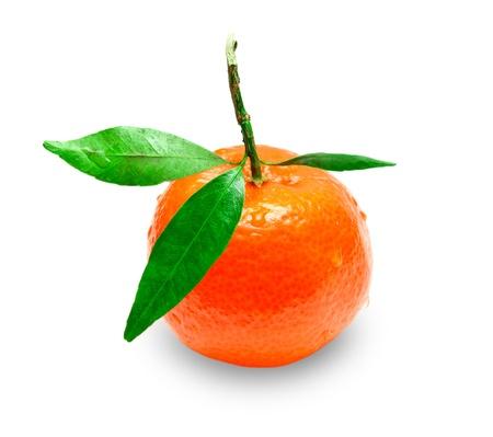 Mandarin isolated on white background Stock Photo - 12001119