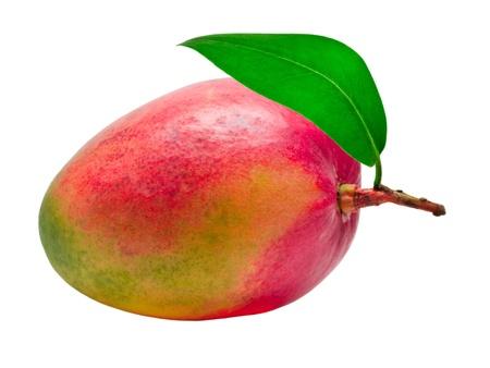 mango: Mango isoliert auf wei�em Hintergrund Lizenzfreie Bilder