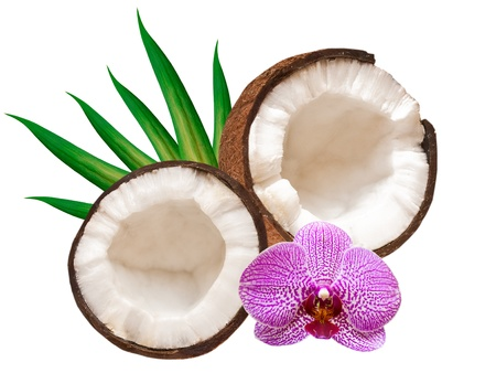 coconut isolated on white background Stok Fotoğraf