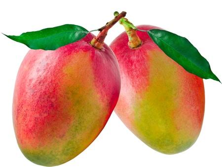 Mango isolated on white background Фото со стока - 12265352