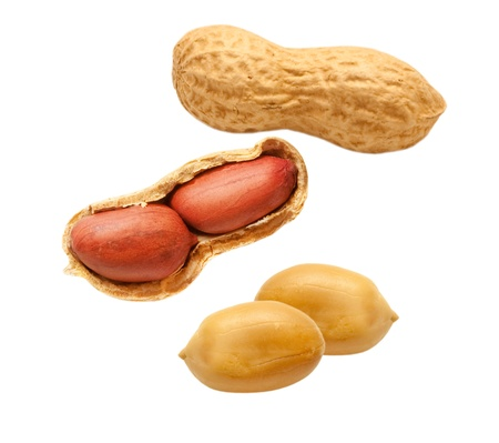 白い背景で隔離のピーナッツ