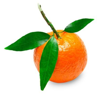 Mandarin isolated on white background Stock Photo - 12608865