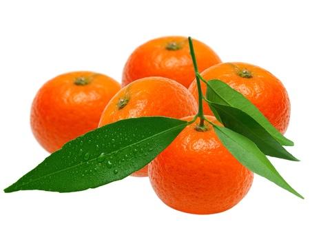 Mandarin isolated on white background Stock Photo - 12609029