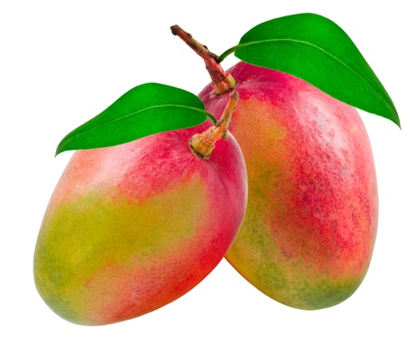 Mango geïsoleerd op witte achtergrond Stockfoto