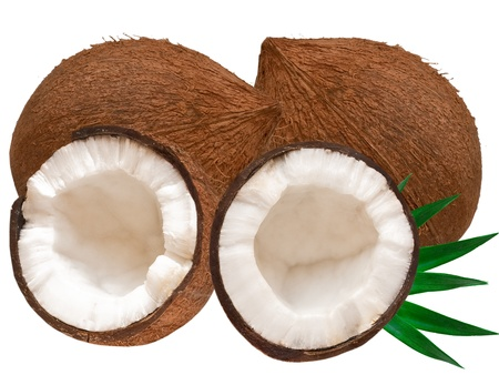 coconut isolated on white background Stock Photo - 13160088