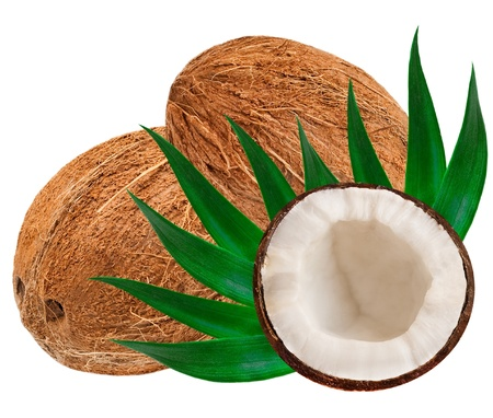 coconut isolated on white background Stock Photo - 13677164