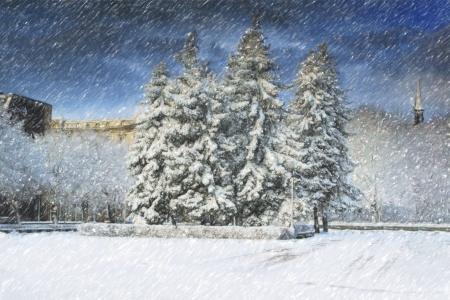 snowlandscape: City park in winter time  Stock Photo
