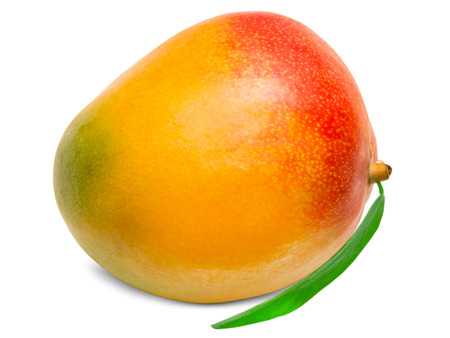 Mango isolated on white background photo
