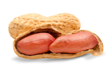 arachis: peanuts isolated on white background