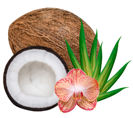 copra: coconut isolated on white background Stock Photo