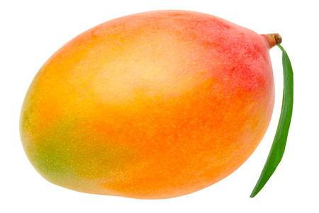 mango fruta: Mango aislado sobre fondo blanco  Foto de archivo