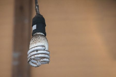Light bulb with dust and catch flies to catch the bulb.