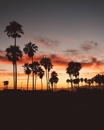 Sunset at Venice Beach California USA Zdjęcie Seryjne