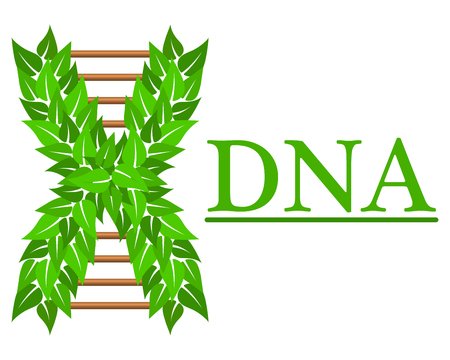 Logo of DNA, for medical centers, biotechnology. Stock Illustratie