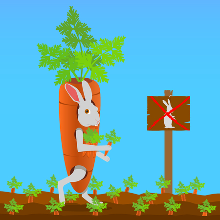 Rabbit thief dressed as a carrot.