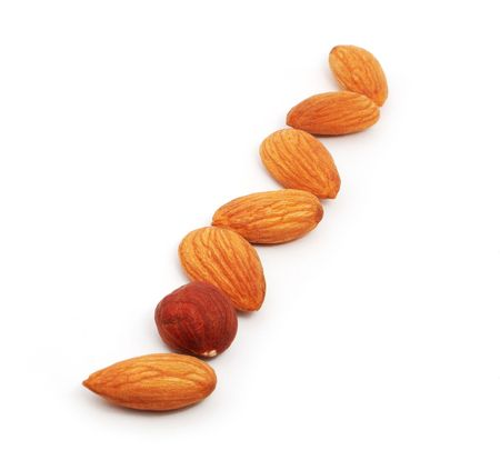 Row of almonds and one hazel on the white background