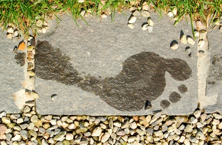 Wet Human Footprint On The Stone