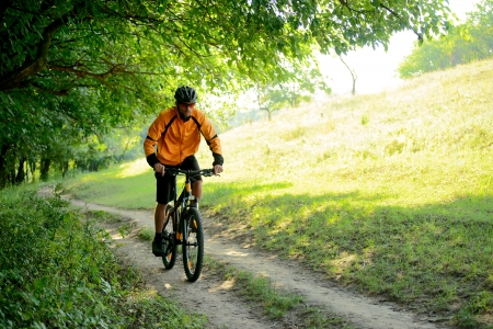 mountainbike: Cyclist Riding the Bike on the Trail in the Beautiful Summer Forest