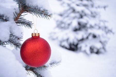 Beautiful Red Christmas Ball on the Fir Branch Covered with Snow  Christmas Background photo