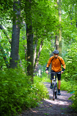 Cyclist Riding the Bike on the Trail in the Beautiful Summer Forest Stock Photo - 30172633